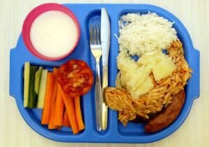 New School dinners at Osidge school,southgate.Todays meal